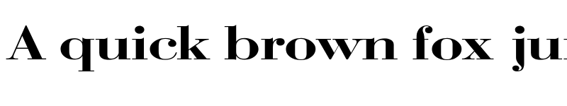 Preview of Bodoni Wide Regular