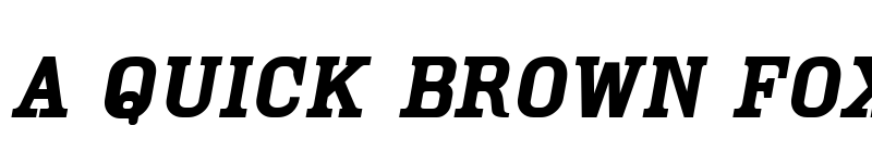 Preview of Cam Oblique