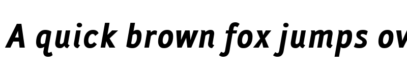 Preview of Folder Bold Italic